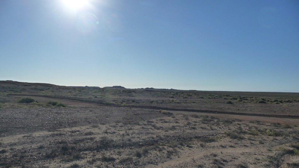 Grey soil where fossils can be found, Coober Pedy