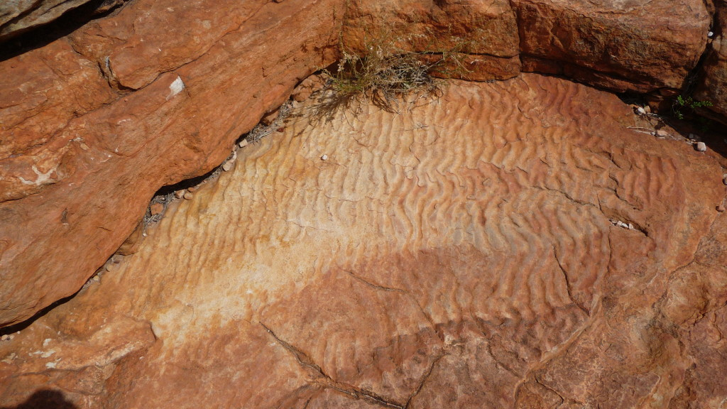 Ripples made millions of years ago from the inland sea