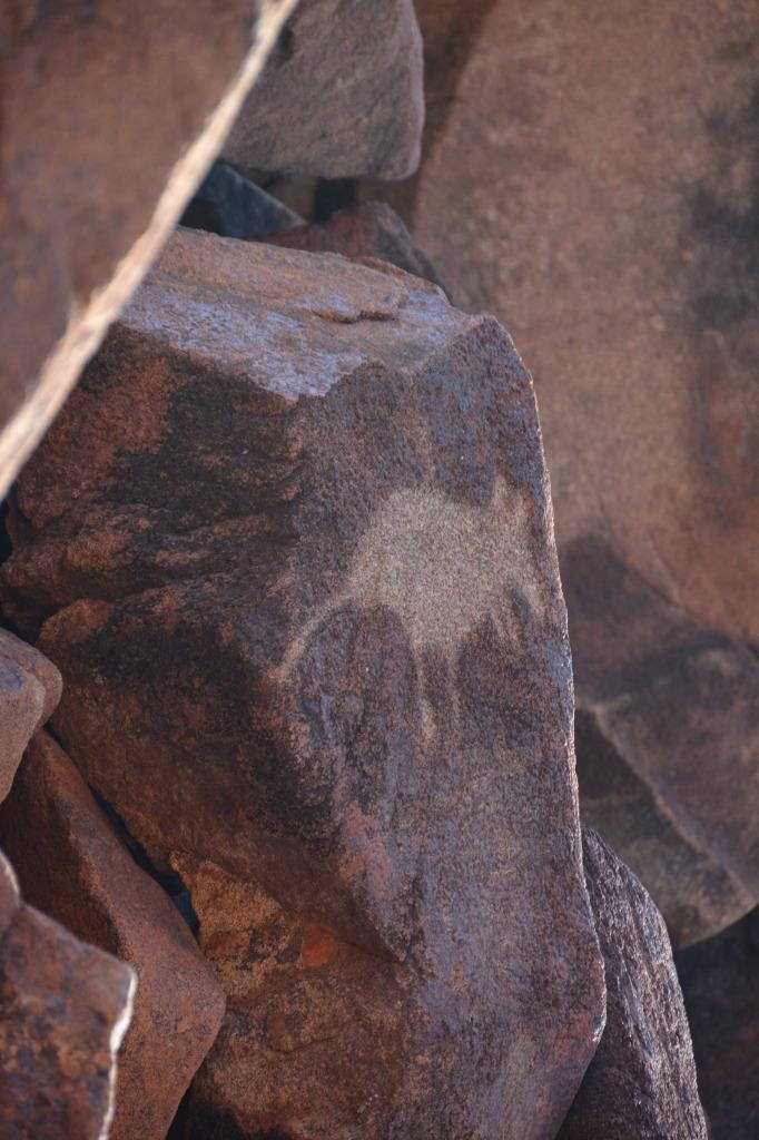wallaby petroglyth at burrup penninsula_pilbara