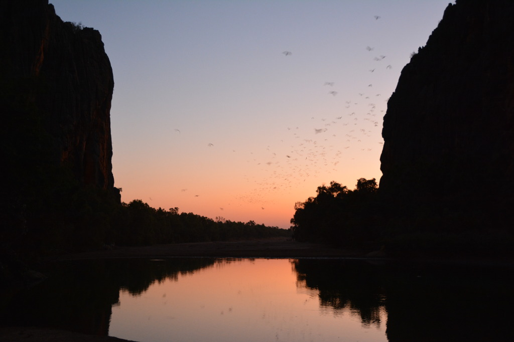 Windjana Gorge on dusk
