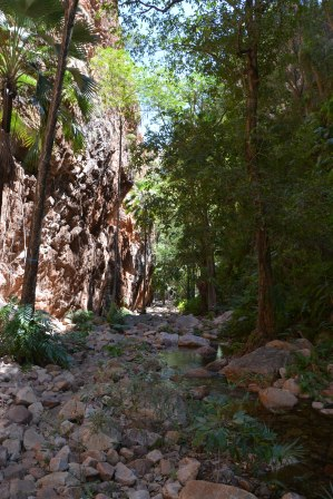 el questro gorge walk_kimberley